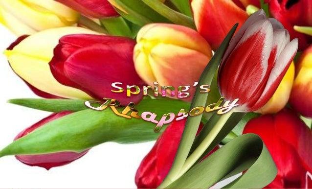 Spring's Rhapsody