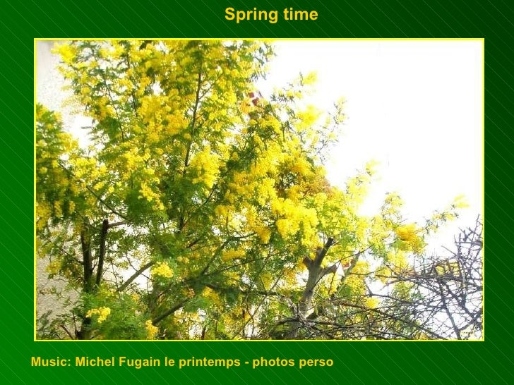 Spring time  Music: Michel Fugain le printemps - photos perso