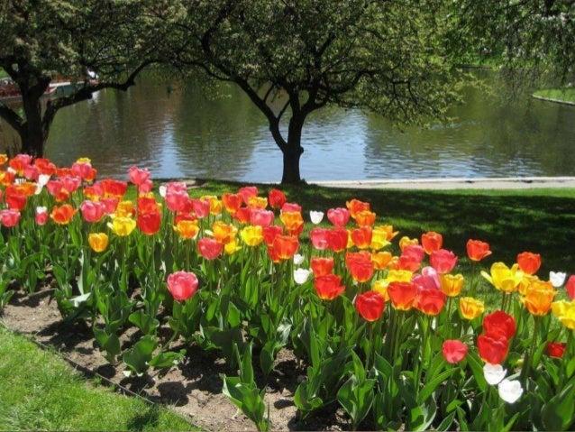 Boston Public Garden et Common