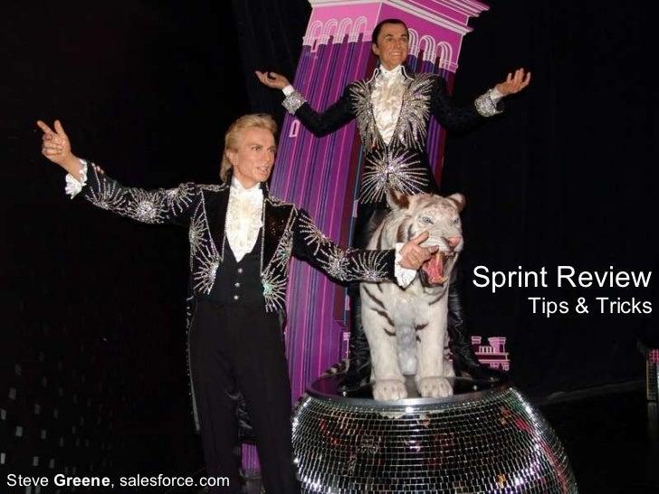 Sprint Review Tips & Tricks Steve  Greene , salesforce.com