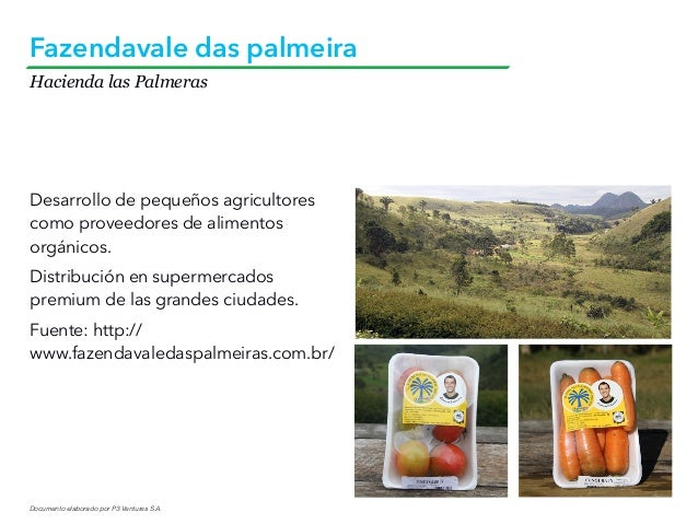 Documento elaborado por P3 Ventures S.A. Hacienda las Palmeras Fazendavale das palmeira Desarrollo de pequeños agricultore...