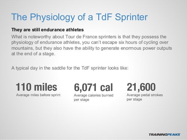The Physiology of a TdF Sprinter They are still endurance athletes What is noteworthy about Tour de France sprinters is th...