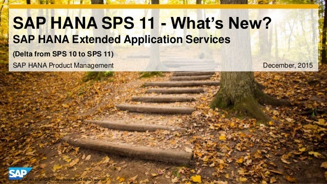 1© 2014 SAP AG or an SAP affiliate company. All rights reserved. SAP HANA SPS 11 - What's New? SAP HANA Extended Applicati...