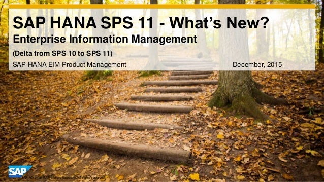 1© 2014 SAP AG or an SAP affiliate company. All rights reserved. SAP HANA SPS 11 - What's New? Enterprise Information Mana...