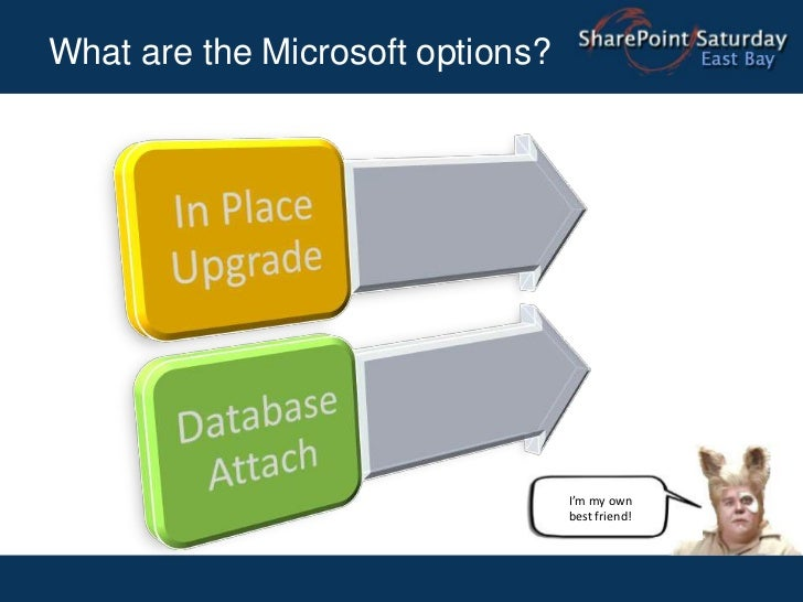 What are the Microsoft options?<br />I'm my own best friend!<br />
