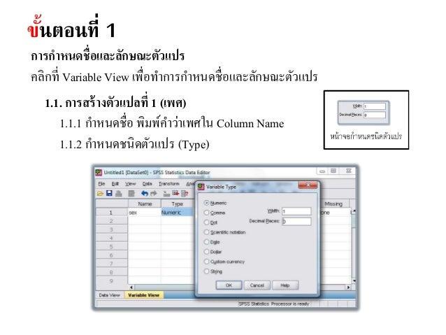 ขั้นตอนที่ 2 การพิมพ์ค่าข้อมูล ในหน้าต่าง Data view ตามลักษณะตัวแปรที่กาหนดไว้ โดยในหน้าจอ Data View ใน 1 บรรทัด หมายถึง แ...