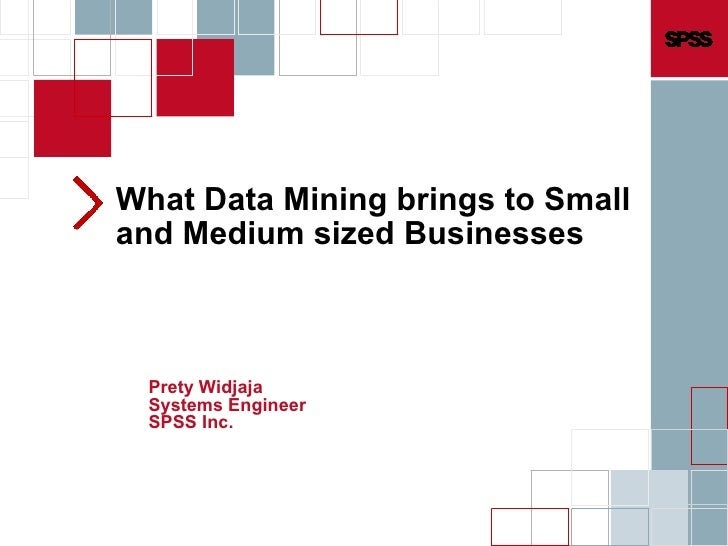 What Data Mining brings to Small and Medium sized Businesses Prety Widjaja Systems Engineer SPSS Inc.