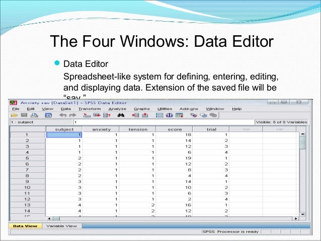 """The Four Windows: Output Viewer Output Viewer Displays output and errors. Extension of the saved file will be """"spv."""""""