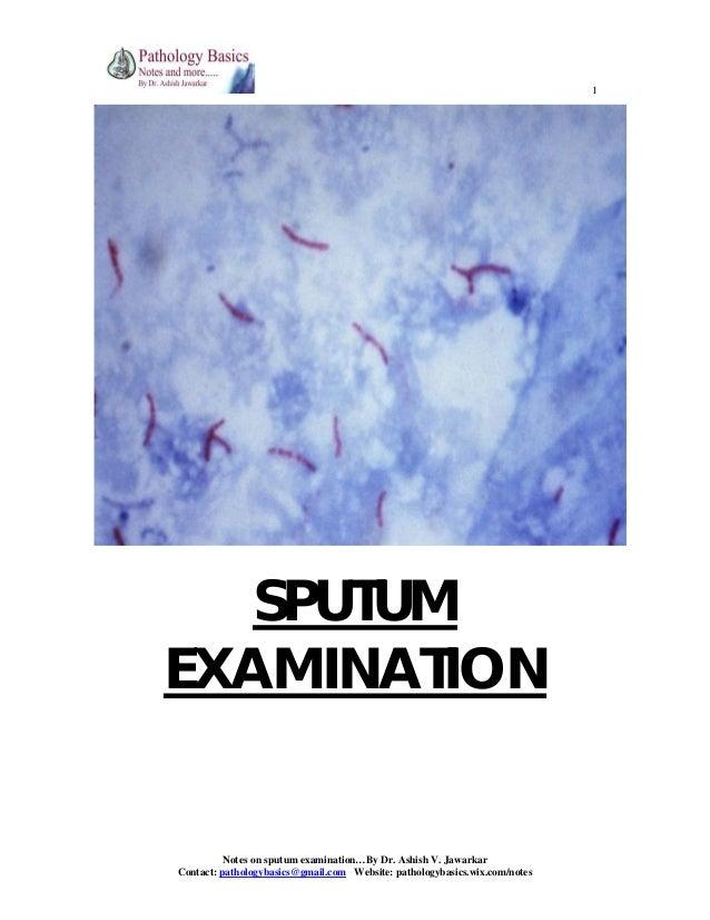 1 sputum examination notes on sputum examinationby dr ashish v jawarkar contact