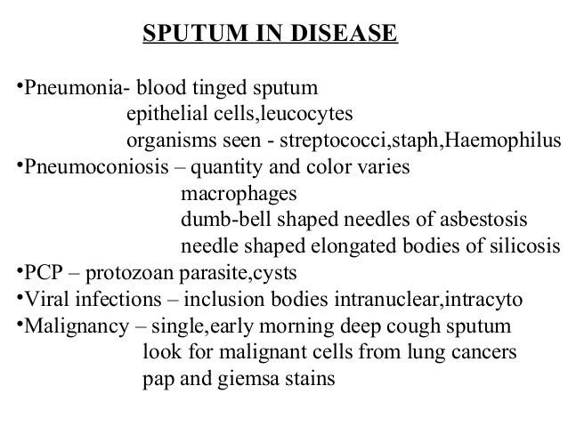sputum and body fluids, csf for bpmt, Skeleton