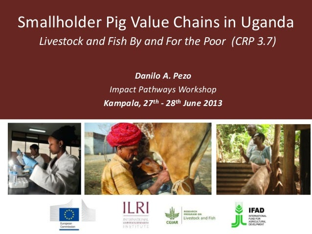 Smallholder Pig Value Chains in Uganda Livestock and Fish By and For the Poor (CRP 3.7) Danilo A. Pezo Impact Pathways Wor...