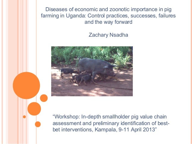 """Workshop: In-depth smallholder pig value chainassessment and preliminary identification of best-bet interventions, Kampal..."