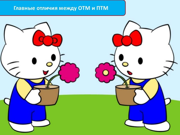 Главные отличия между ОТМ и ПТМ