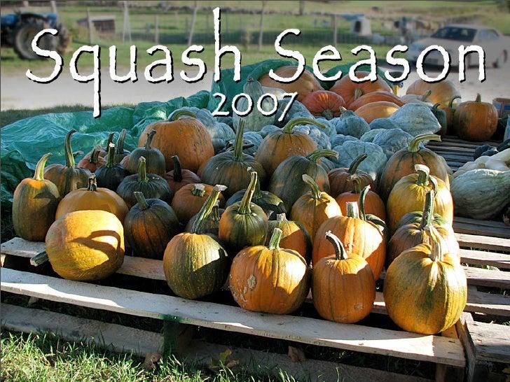 Squash Season 2007