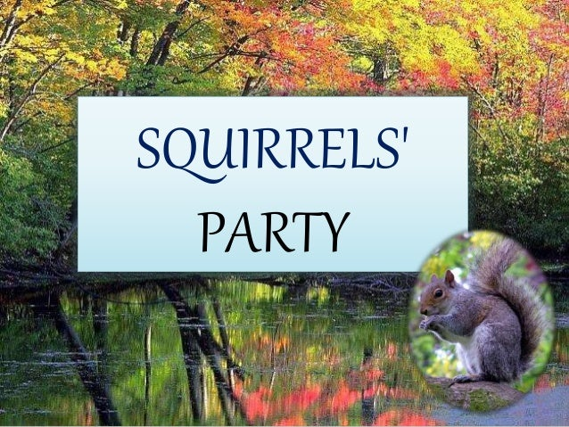 SQUIRRELS' PARTY