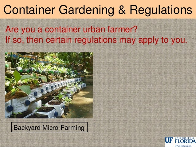 Container Gardening & Regulations Rooftop Urban Farming