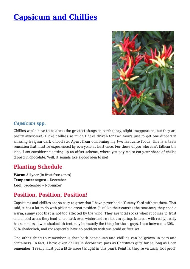 Capsicum and Chillies Capsicum spp. Chillies would have to be about the greatest things on earth (okay, slight exaggeratio...