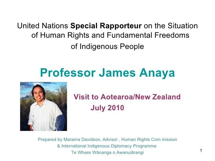 <ul><li>United Nations  Special Rapporteur  on the Situation of Human Rights and Fundamental Freedoms  </li></ul><ul><li>o...