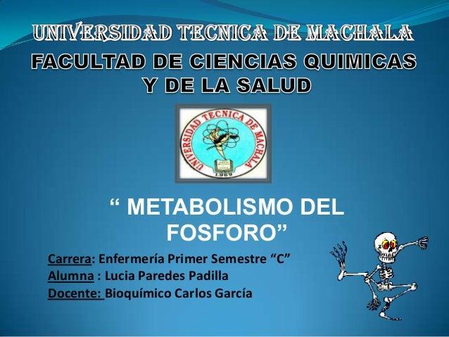 """"""" METABOLISMO DEL FOSFORO"""" Carrera: Enfermería Primer Semestre """"C"""" Alumna : Lucia Paredes Padilla Docente: Bioquímico Carl..."""