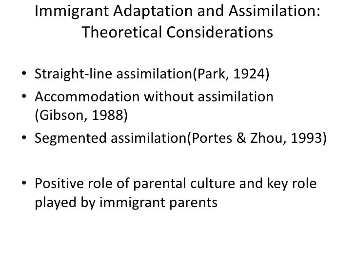 sra culture helps make good decisions  3 immigrant adaptation and assimilation