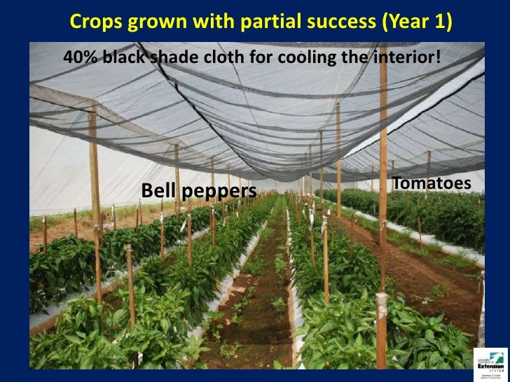 Net House Vegetable Production 2011