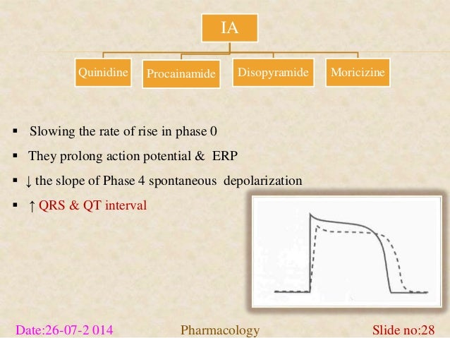 IA  Quinidine Procainamide Disopyramide Moricizine   Slowing the rate of rise in phase 0   They prolong action potential...