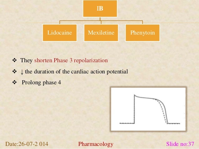  They shorten Phase 3 repolarization   ↓ the duration of the cardiac action potential   Prolong phase 4  IB  Lidocaine ...