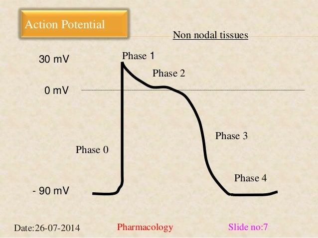 Action Potential  Phase 0  Phase 3  Phase 4  Phase 1  Phase 2  30 mV  0 mV  - 90 mV  Non nodal tissues  Date:26-07-2014 Ph...