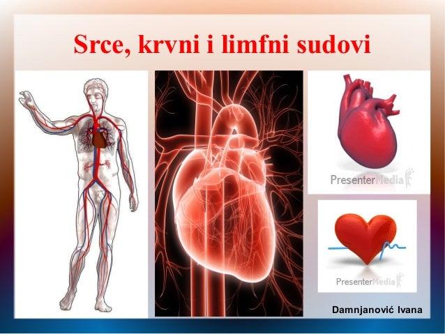 Srce, krvni i limfni sudovi Damnjanović Ivana