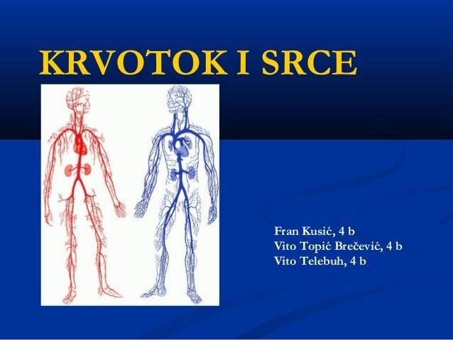 KRVOTOK I SRCE Fran Kusić, 4 b Vito Topić Brečević, 4 b Vito Telebuh, 4 b