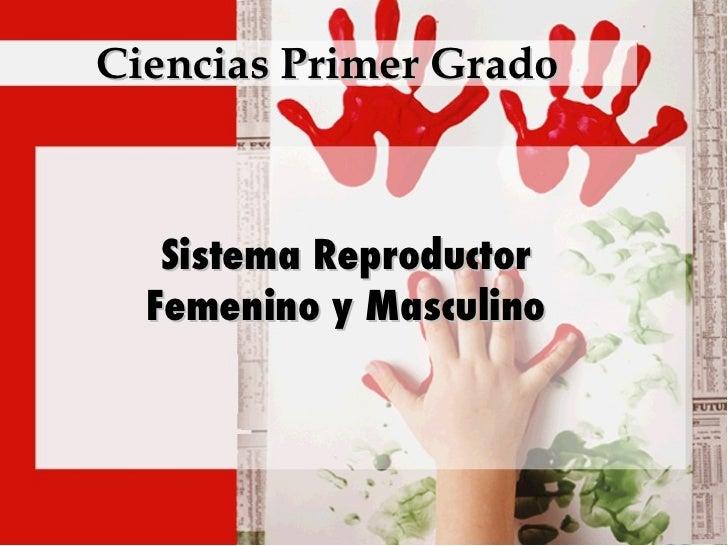Ciencias Primer Grado Sistema Reproductor Femenino y Masculino