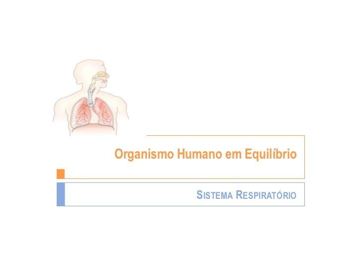 Organismo Humano em Equilíbrio             SISTEMA RESPIRATÓRIO