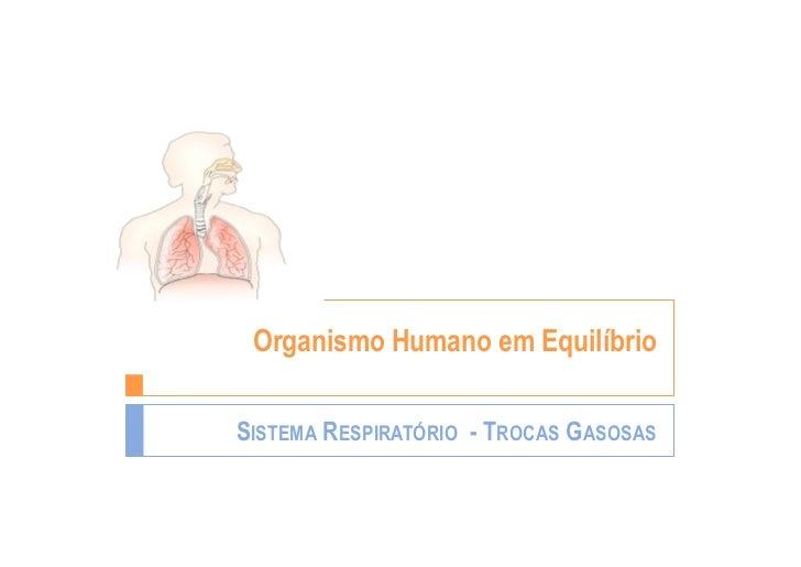 Organismo Humano em EquilíbrioSISTEMA RESPIRATÓRIO - TROCAS GASOSAS