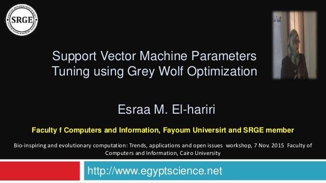 support vector machine parameters