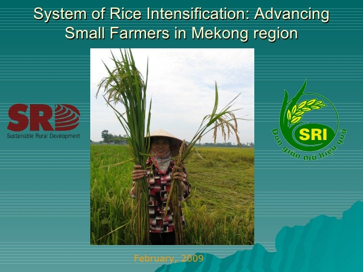 System of Rice Intensification: Advancing Small Farmers in Mekong region February, 2009