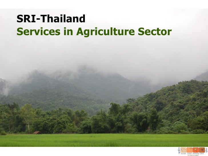 SRI-ThailandServices in Agriculture Sector