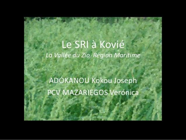 Le SRI à Kovié La Vallée du Zio, Région Maritime ADOKANOU Kokou Joseph PCV MAZARIEGOS Verónica