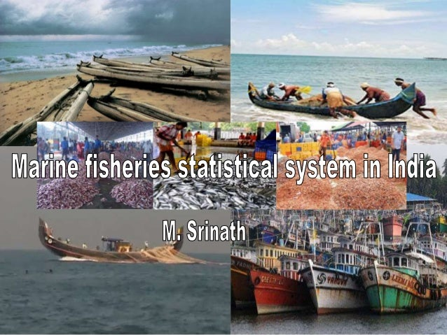 Marine fisheries statistical system in India  • Introduction  • Measurement needs  • Evolution of statistical system for m...