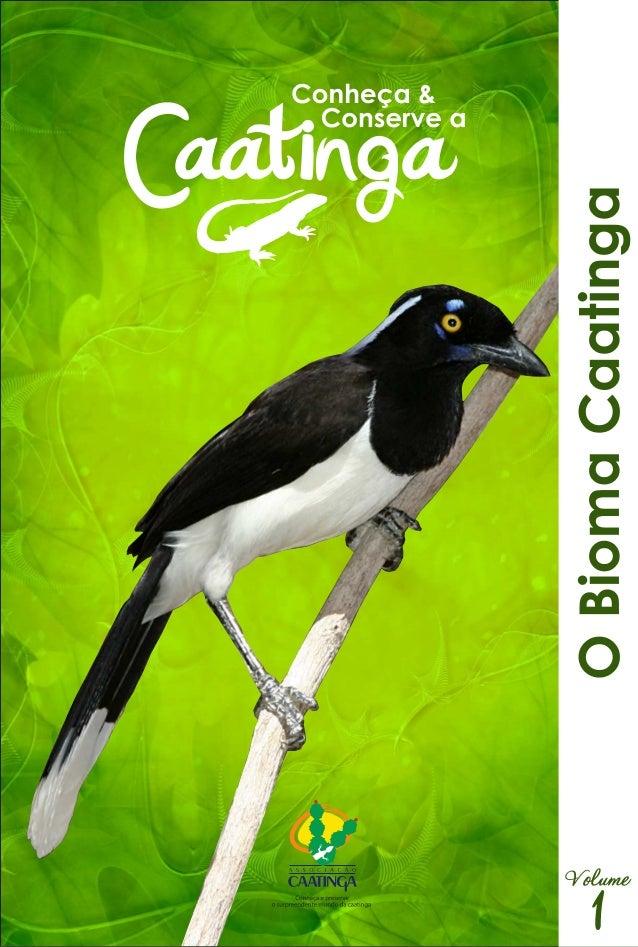 Série   conheça e conserve a caatinga vol1