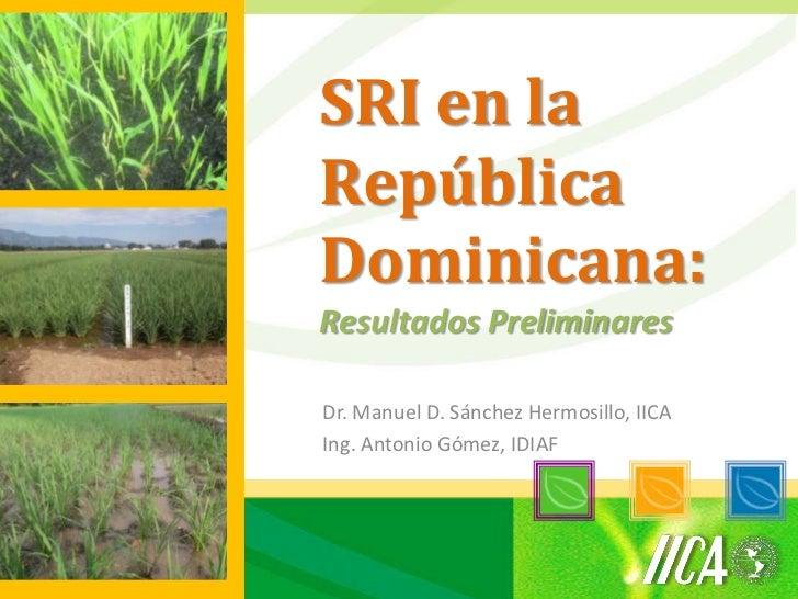 SRI en laRepúblicaDominicana:Resultados PreliminaresDr. Manuel D. Sánchez Hermosillo, IICAIng. Antonio Gómez, IDIAF