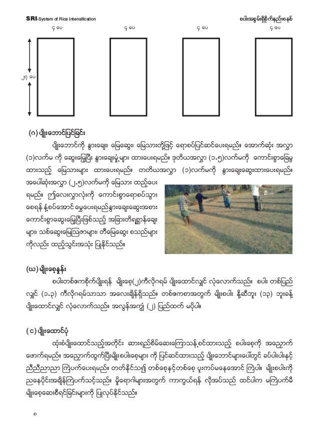9 pyg;tpGrf;&Sdpdkufenf;pepfSRI-System of Rice Intensification