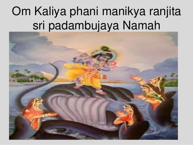 Om Kaliya phani manikya ranjita sri padambujaya Namah