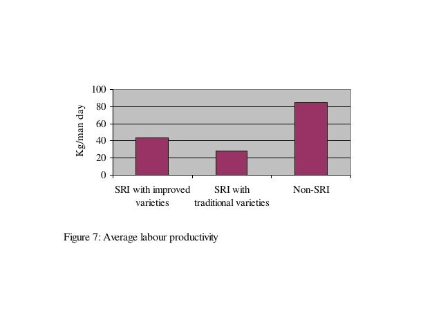 Figure 7: Average labour productivity 0 20 40 60 80 100 SRI with improved varieties SRI with traditional varieties Non-SRI...