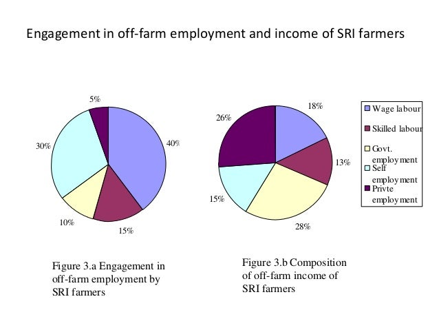 Engagement in off-farm employment and income of SRI farmers 40% 15% 10% 30% 5% 18% 13% 28% 15% 26% Wage labour Skilled lab...