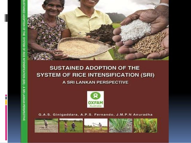Rice cultivation -- in crisis all over the world Sri Lanka -- no exception ,with its:  Shrinking cultivable area  Fluc...