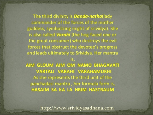 The third divinity is Danda-natha(lady    commander of the forces of the mothergoddess, symbolizing might of srividya). Sh...