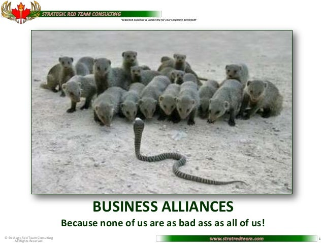 BUSINESS ALLIANCES                                  Because none of us are as bad ass as all of us!© Strategic Red Team Co...