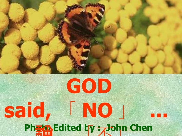 Photo Edited by :  John Chen GOD said, 「 NO 」  ...  神說「不」…