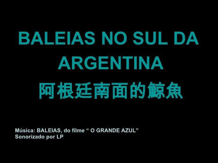 """<ul><li>BALEIAS NO SUL DA  </li></ul><ul><li>ARGENTINA </li></ul><ul><li>阿根廷南面的鯨魚 </li></ul>Música: BALEIAS, do filme """" O ..."""