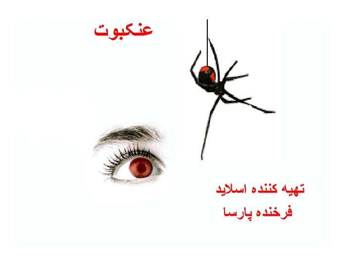 عنکبوت تهیه کننده اسلاید  فرخنده پارسا